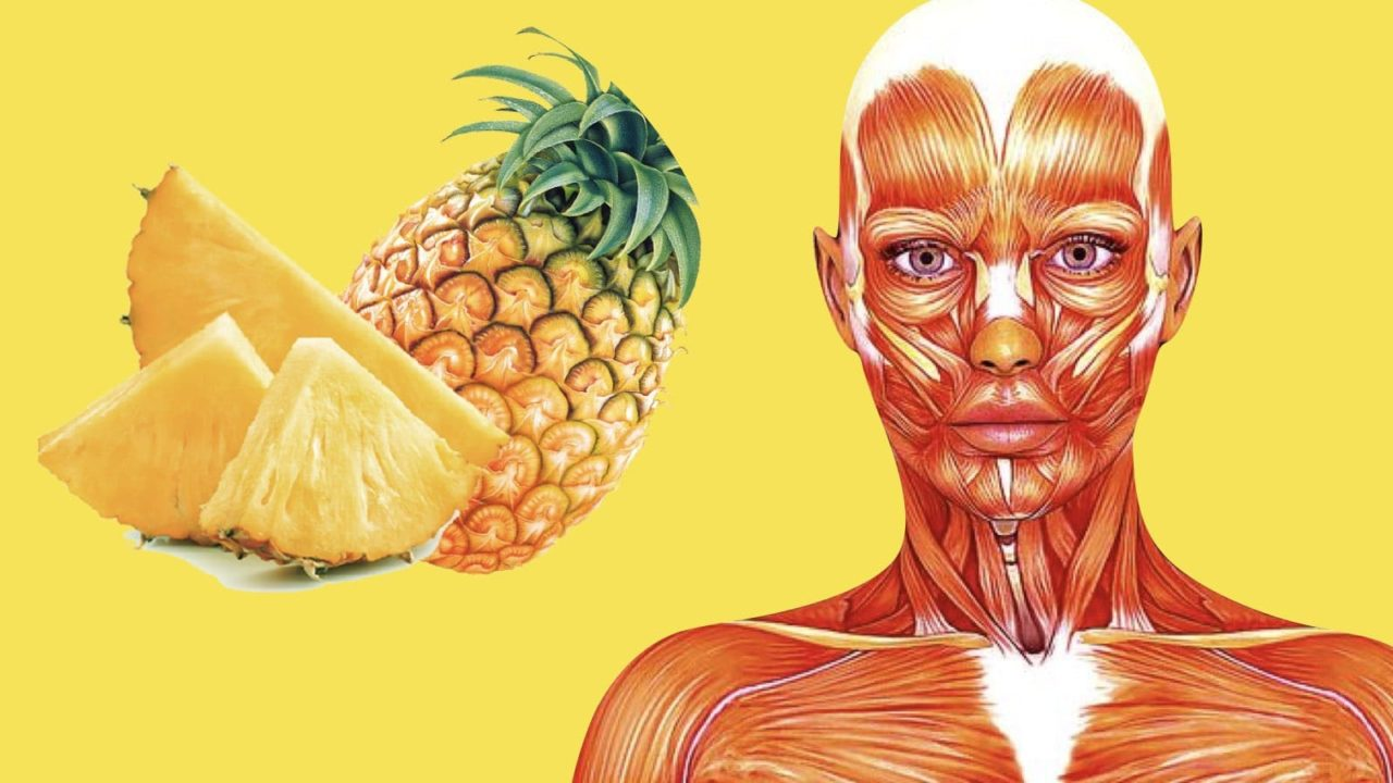 The Most Useful Foods to Strengthen Your Immune System